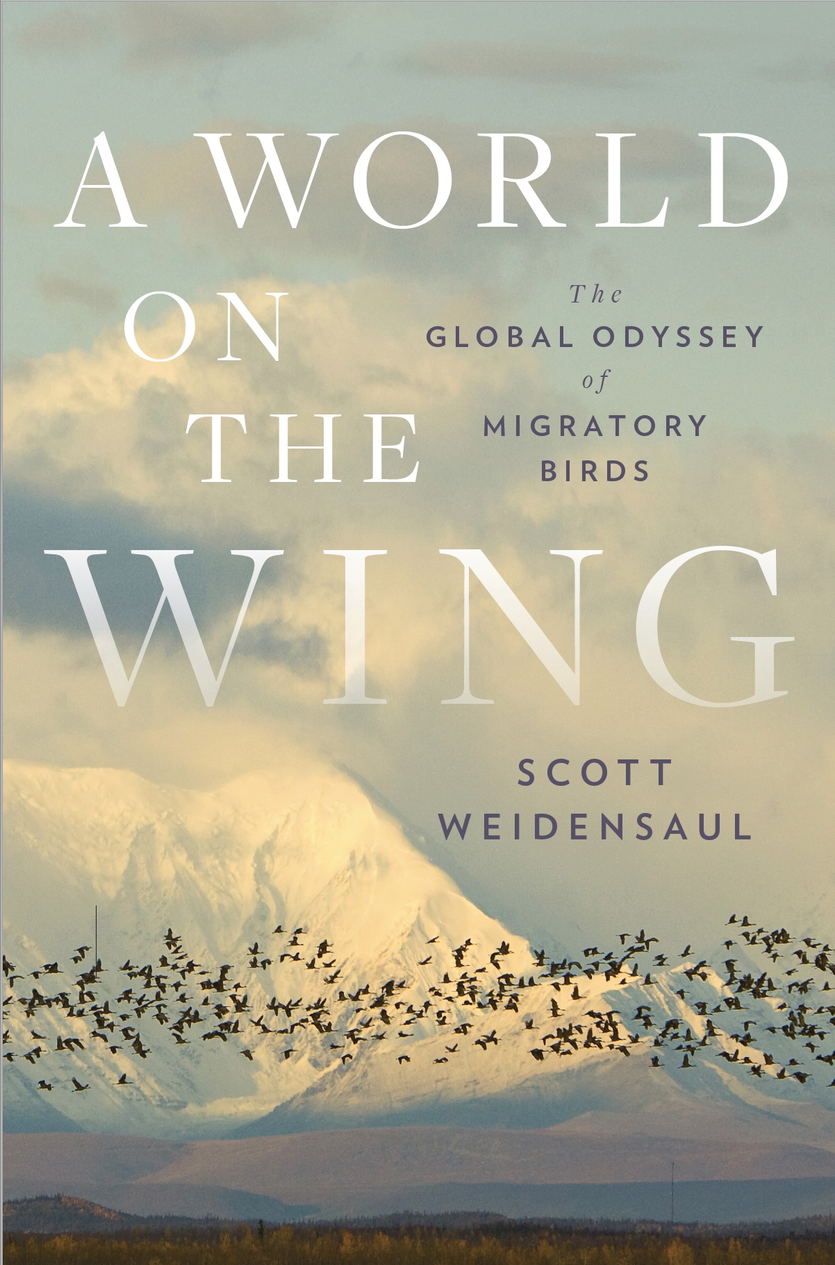 202107 WORLD ON THE WING jacket