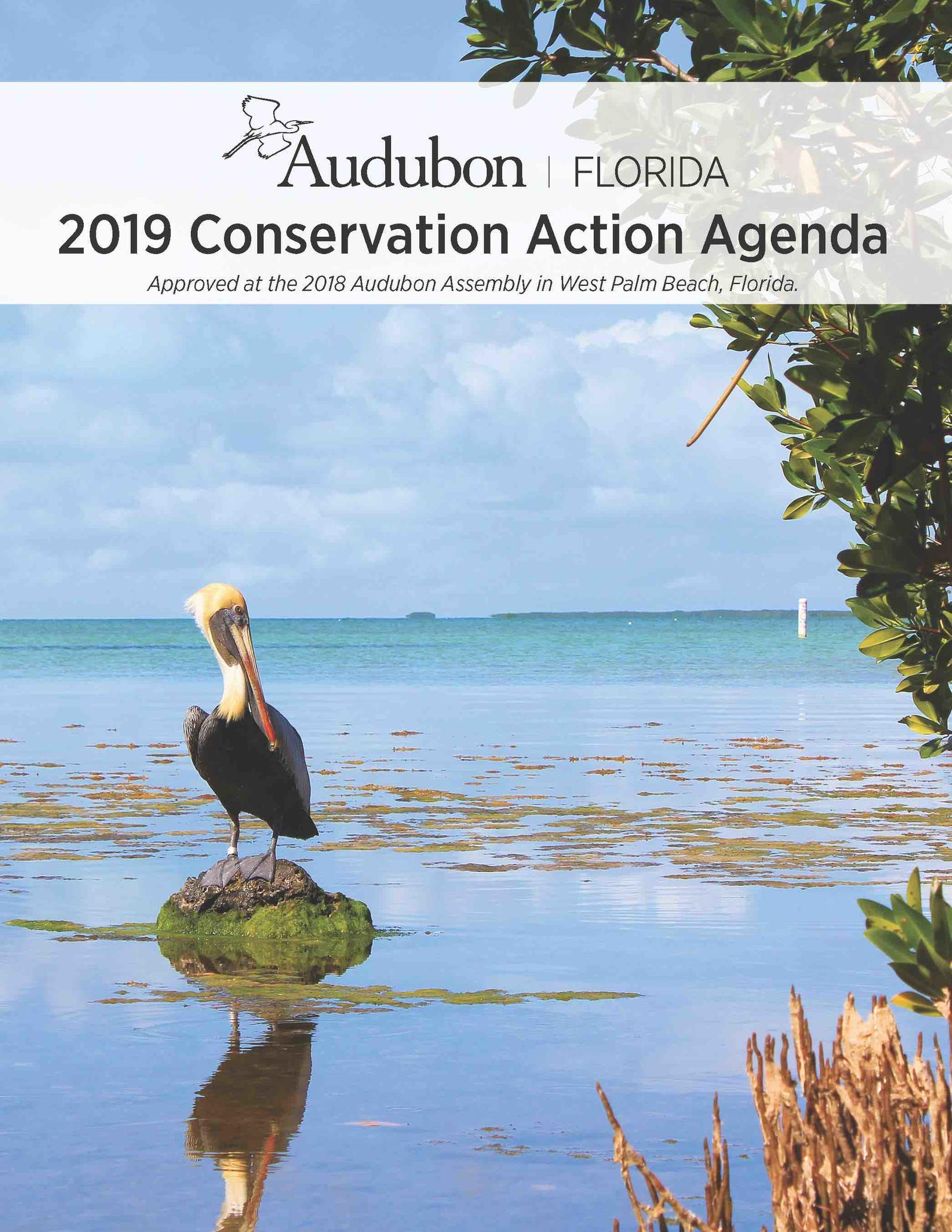 Audubon Assembly 2018