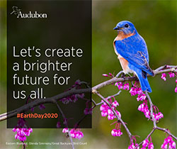 Audubon Earth Day 2020