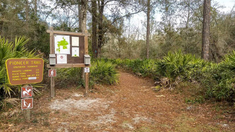 Jennings State Forest