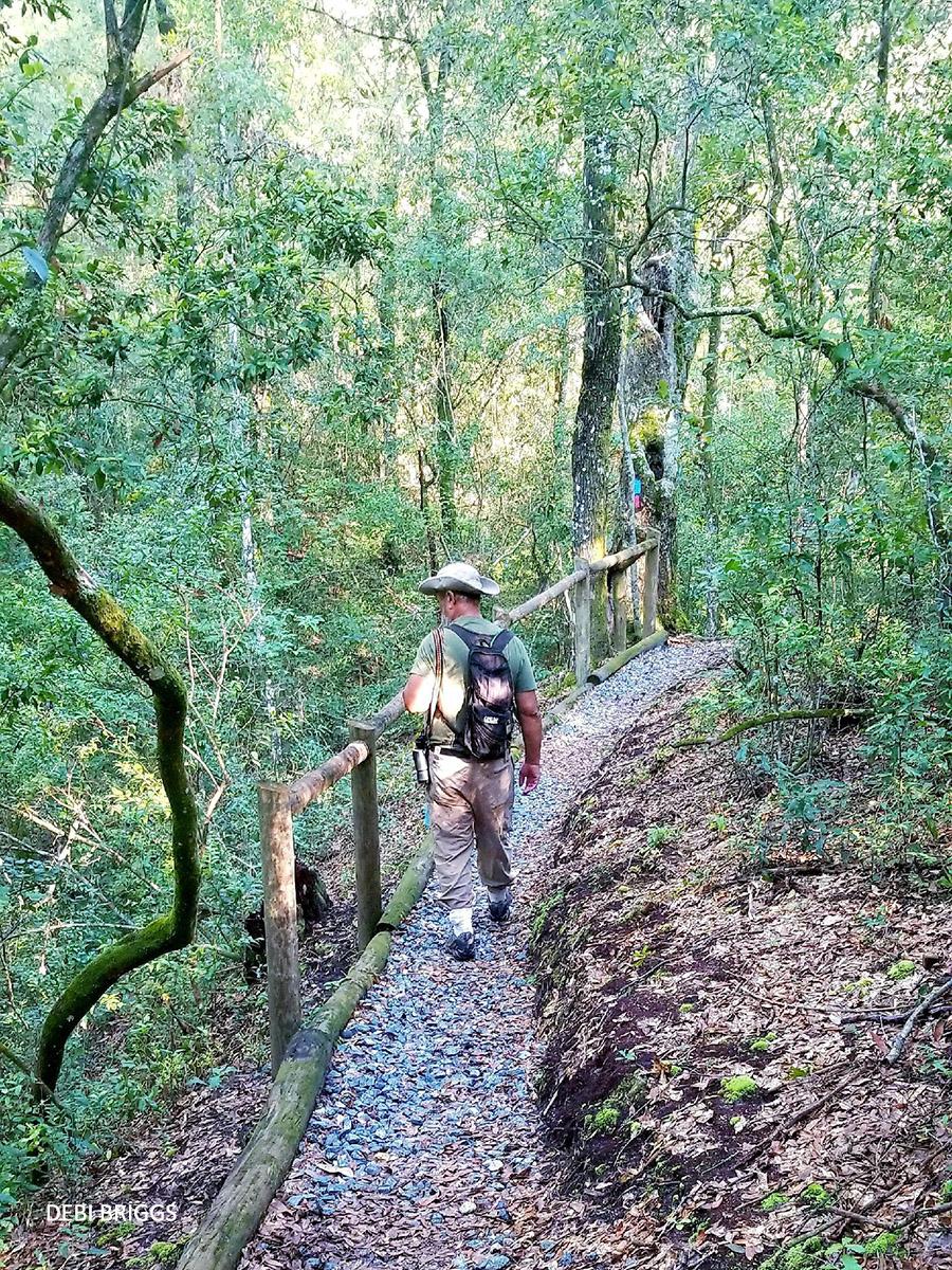 Jennings State Forest field trip watermark Debi Briggs 20210904